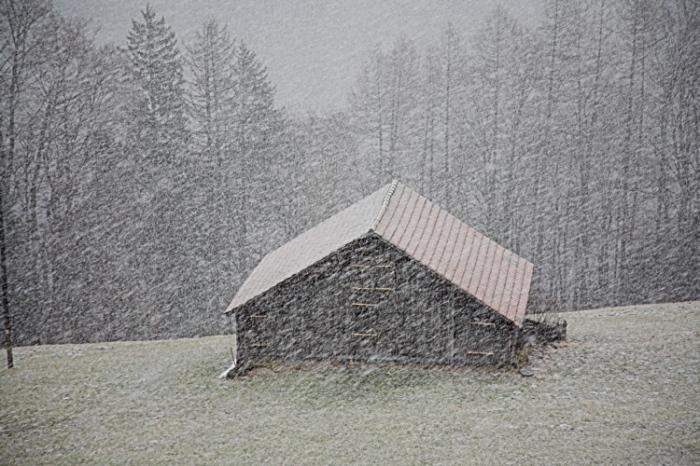 doch_es_schneit_auch_im_Januar