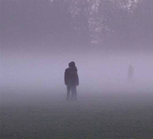 Stadtpark-Nebel