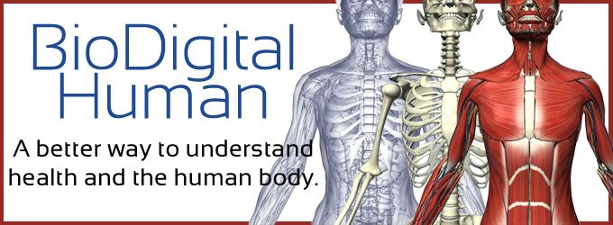 biodigitalbanner