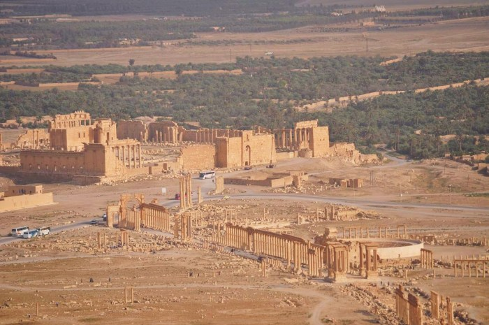 syria_palmyra_view_from_citadel